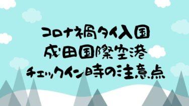 コロナ禍でタイ入国する人へ、成田国際空港チェックイン時の注意点まとめ